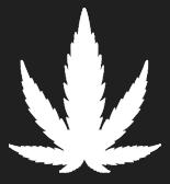 https://mysunrise.ca/wp-content/uploads/2021/07/home-header-leaf.png